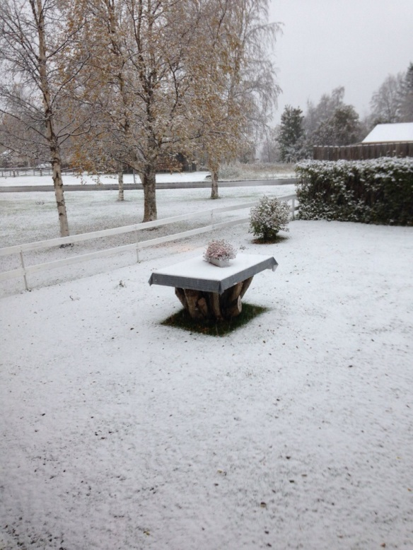 Så här såg det ut hemma i min hemby Hede i Härjedalen på morgonkvisten.