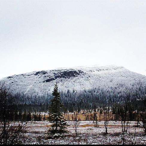 Vintern är på intågande hemma i Härjedalen. Bild från Särvfjället och vår stuga