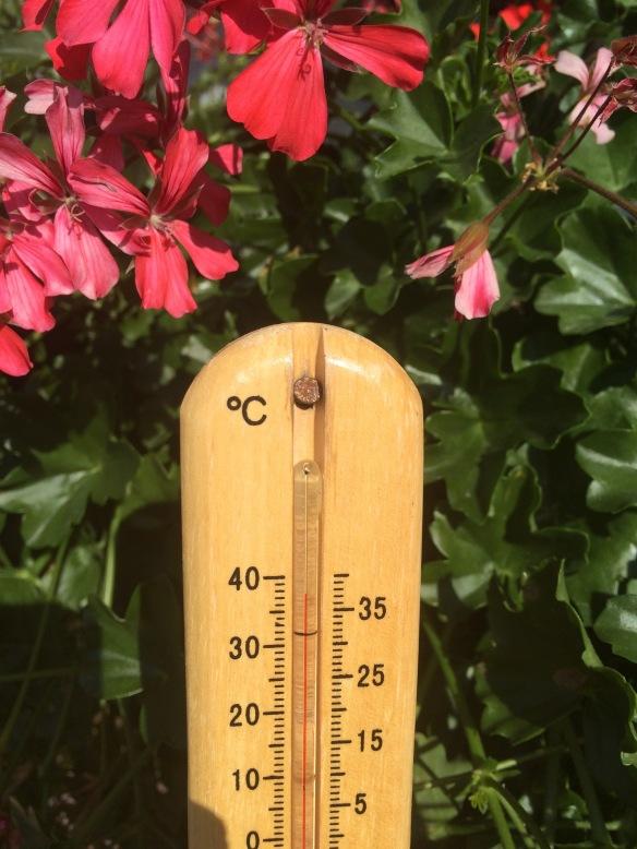 Okej det var lite varmt!