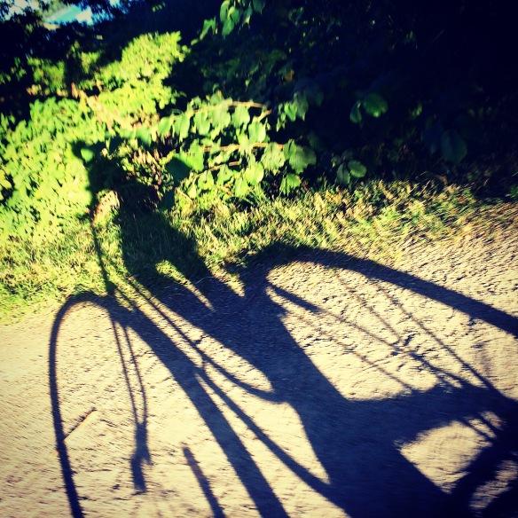 Workmode på mammas gamla cykel .....eller iofs den är lika gammal som mig....så den är ung med andra ord!