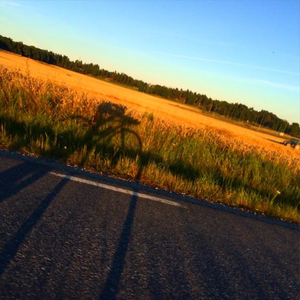 Tillbaka till Stockholm och vardagen som drog igång igen. Det innebar även sena kvällspass på cykeln ute på Ekerö-